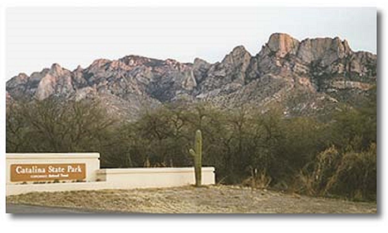 Catalina State Park's Outdoor Concerts Scheduled April through July